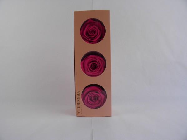 Gefrier Rose Hot Pink